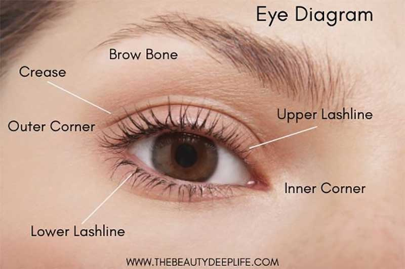 5 روش سایه چشم ساده تنها با یک رنگ | تکنیک سایه چشم SMOKEY | تکنیک سایه چشم مات | سایه چشم براق چشم گربه ای | سایه چشم کانتورینگ شده |